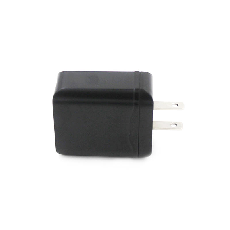 PD & QC 3.0 Traveler 2 Port Usb Wall Charger For Flame Resistant PC CTC-0004